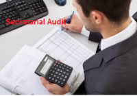 secretarial audits