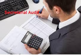 Secretarial Audits Limits